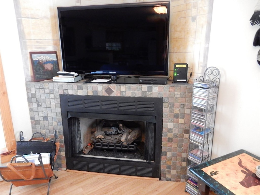 TV and fireplace