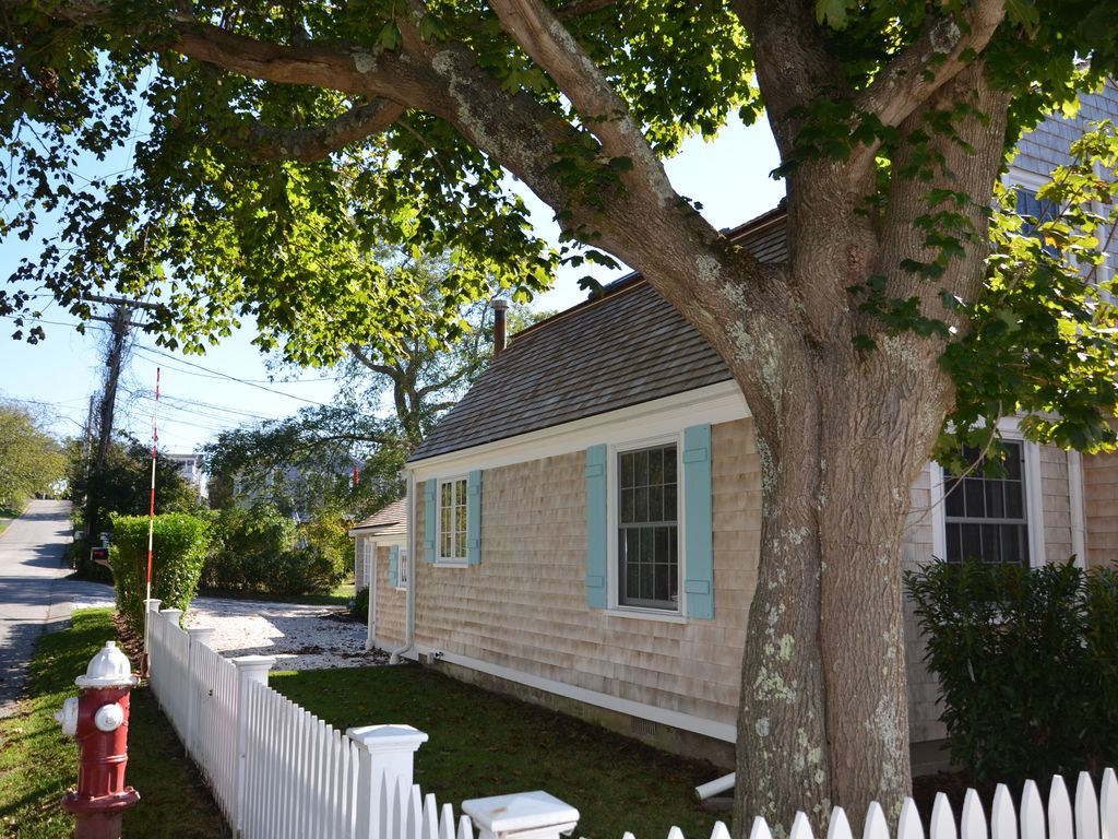 Classic Cape Cod picket fence and privet hedge for additional privacy.
