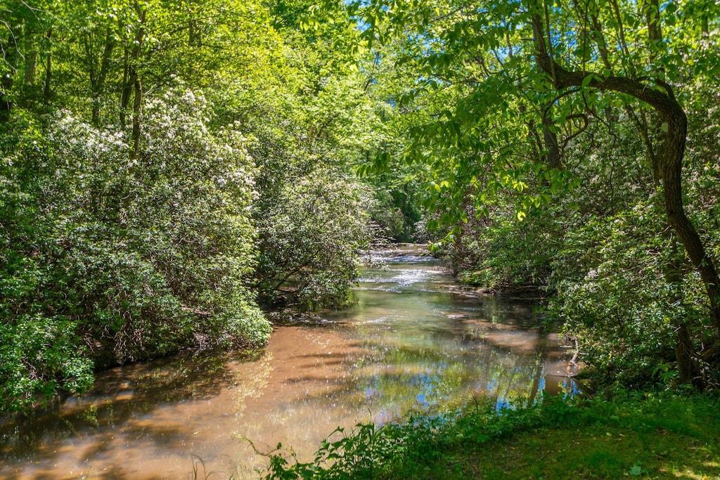 Blue Creek out Back