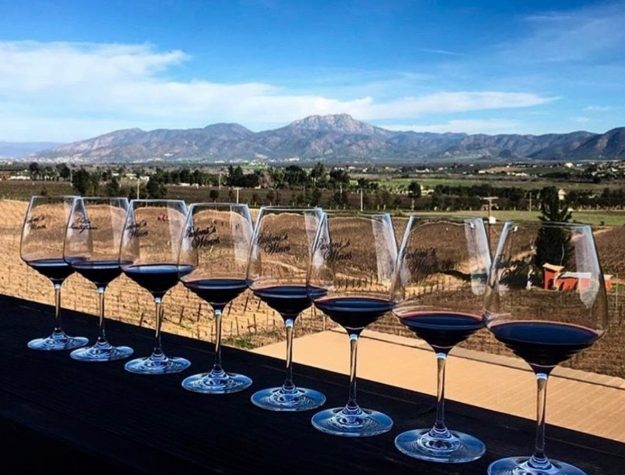 Wine tasting in Valle de Guadalupe