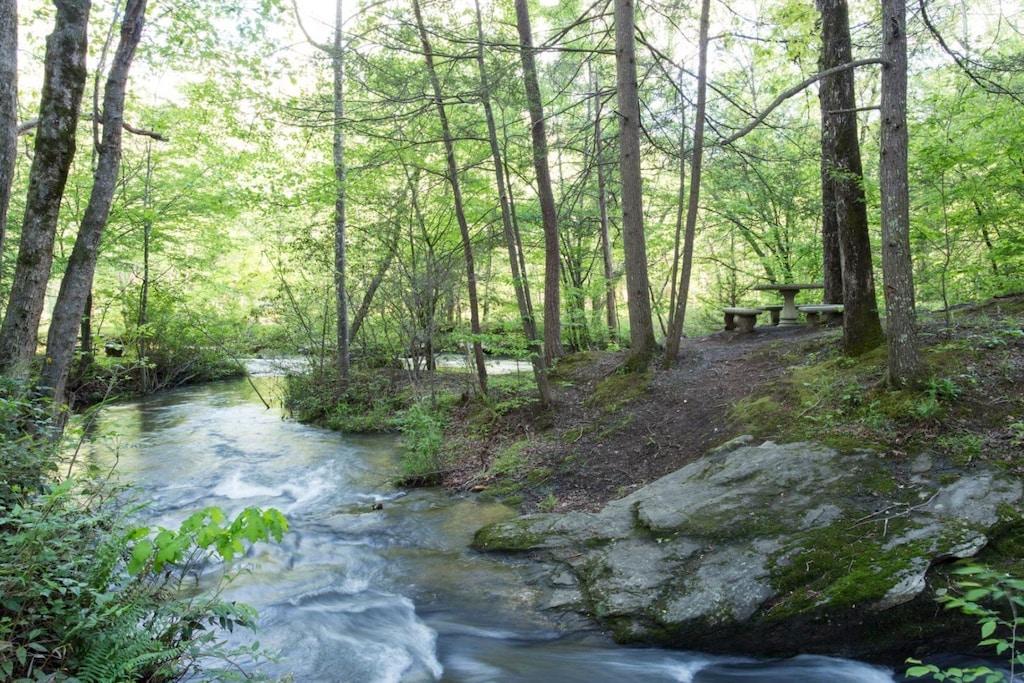 Plan a picnic near the common area river access