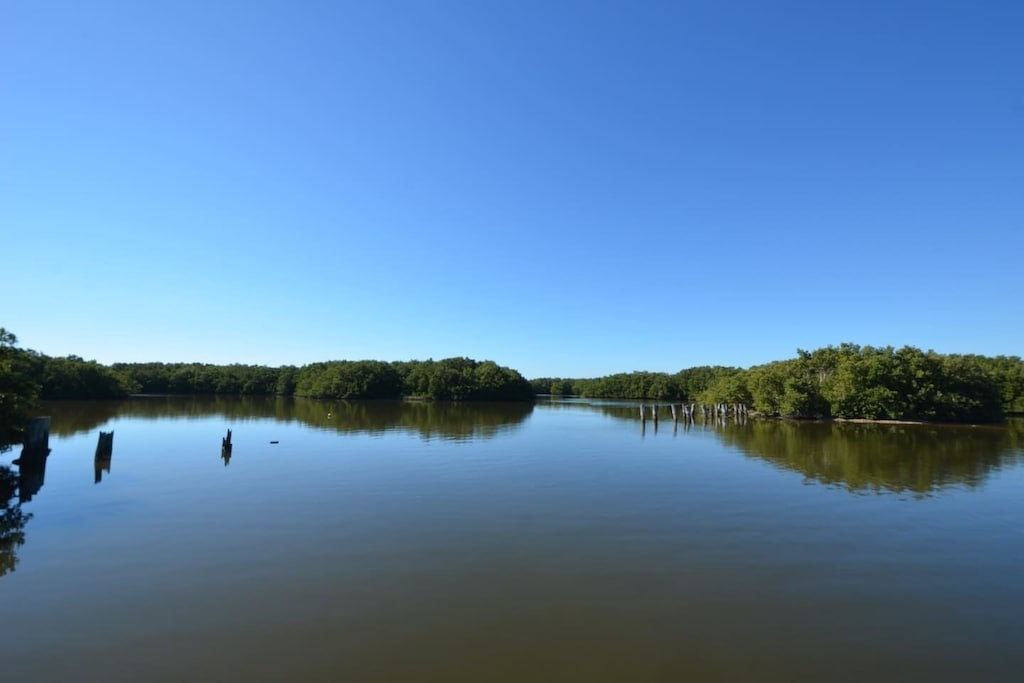 View from Dock on Property