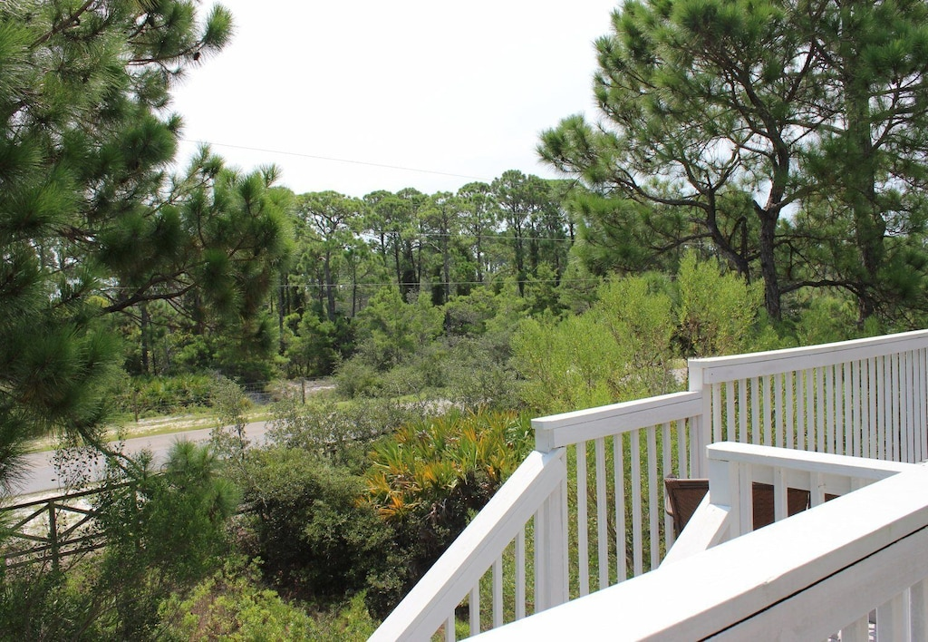 .View of State Park from Living Room Deck