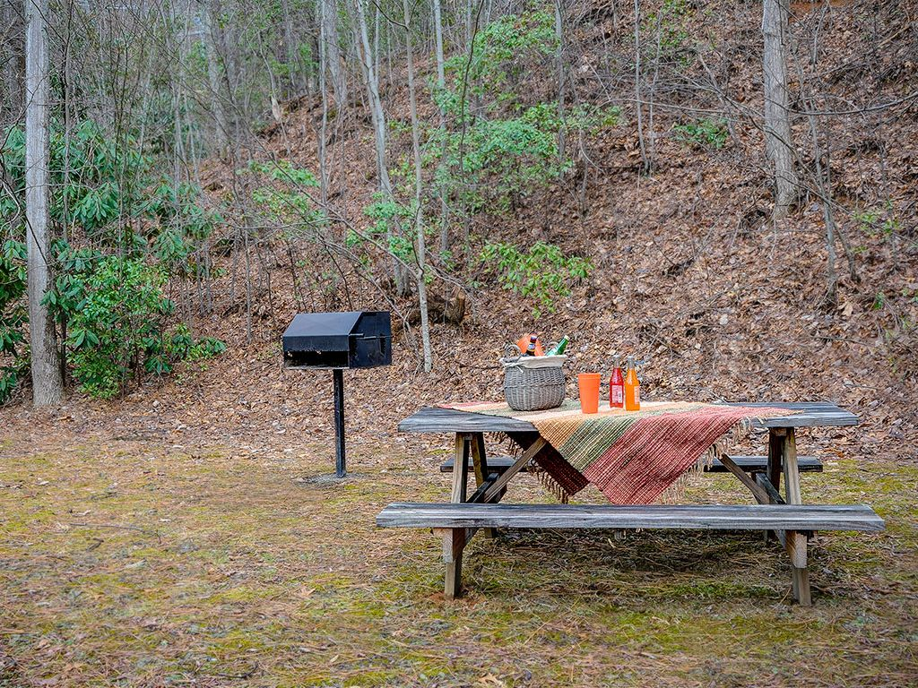 Picnic Table and Park Grill for your outdoor enjoyment
