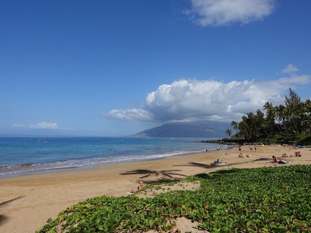 One of Maui's best beaches Kamaole Beach Park I. 20 min walk or 3-minute drive.