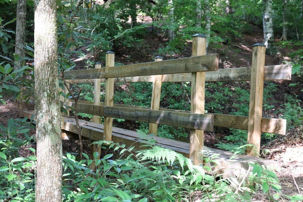 Pathway to Mirror Lake