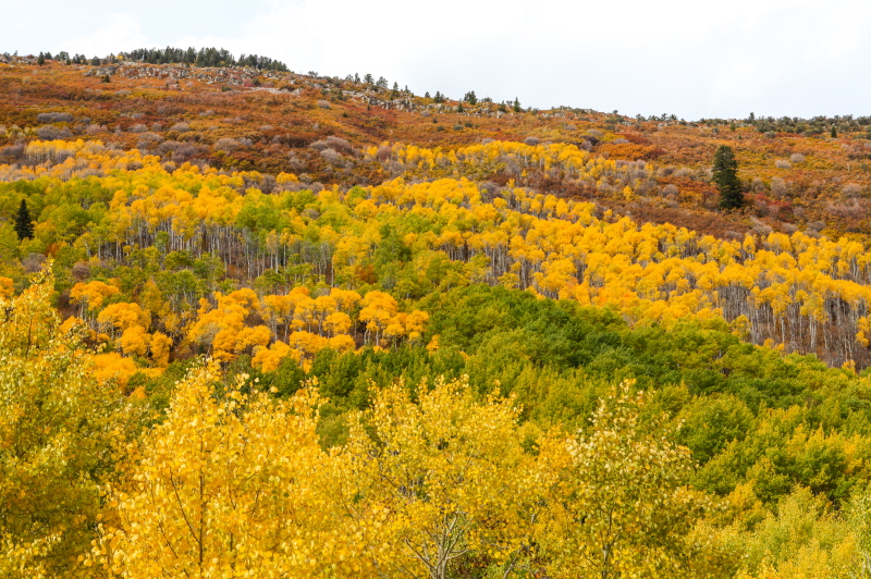 Park City Mountain in the Fall