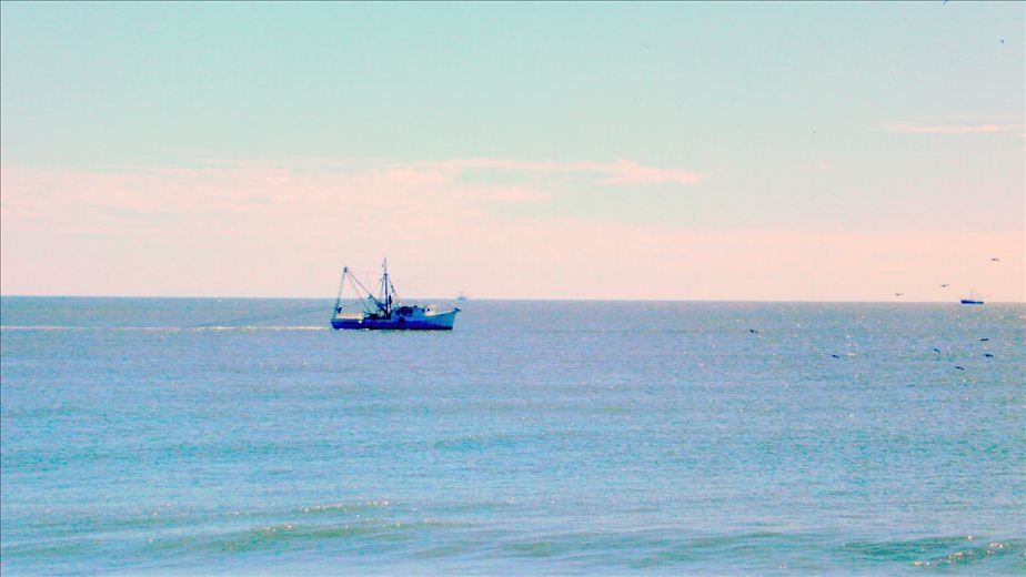 Shrimp boat out front!