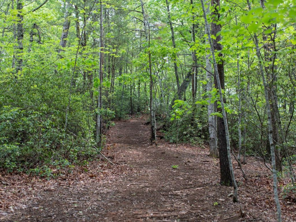 Quiet Hiking Trails in the area