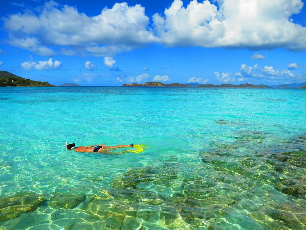 Best snorkeling on St. Thomas is right on Sapphire Beach