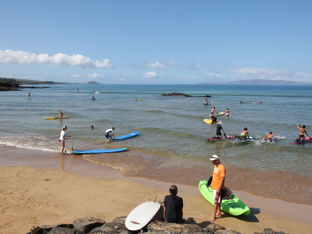 Walk to The Cove Beach park, try paddle boarding, surfing, or kayaking