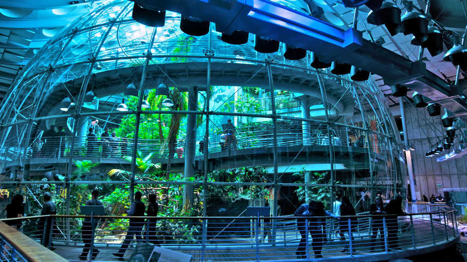 One of the Academy of Science's many exhibits