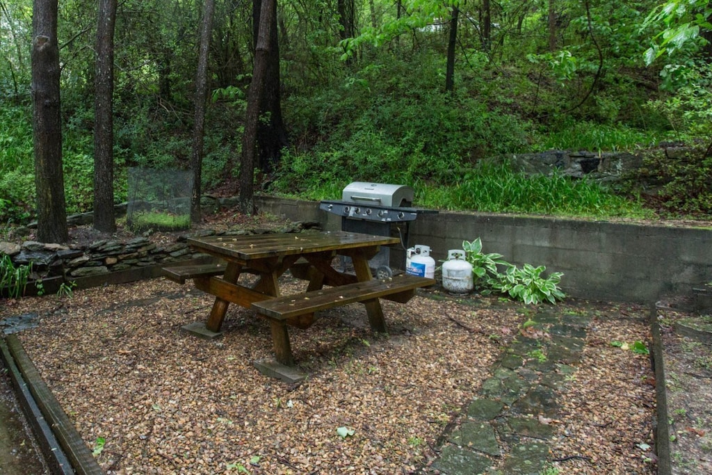 On the stone patio is a picnic table and gas grill.
