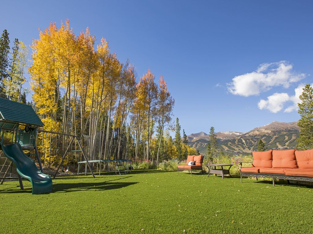 Backyard and playground - Swing set and trampoline! Turf lawn is always green