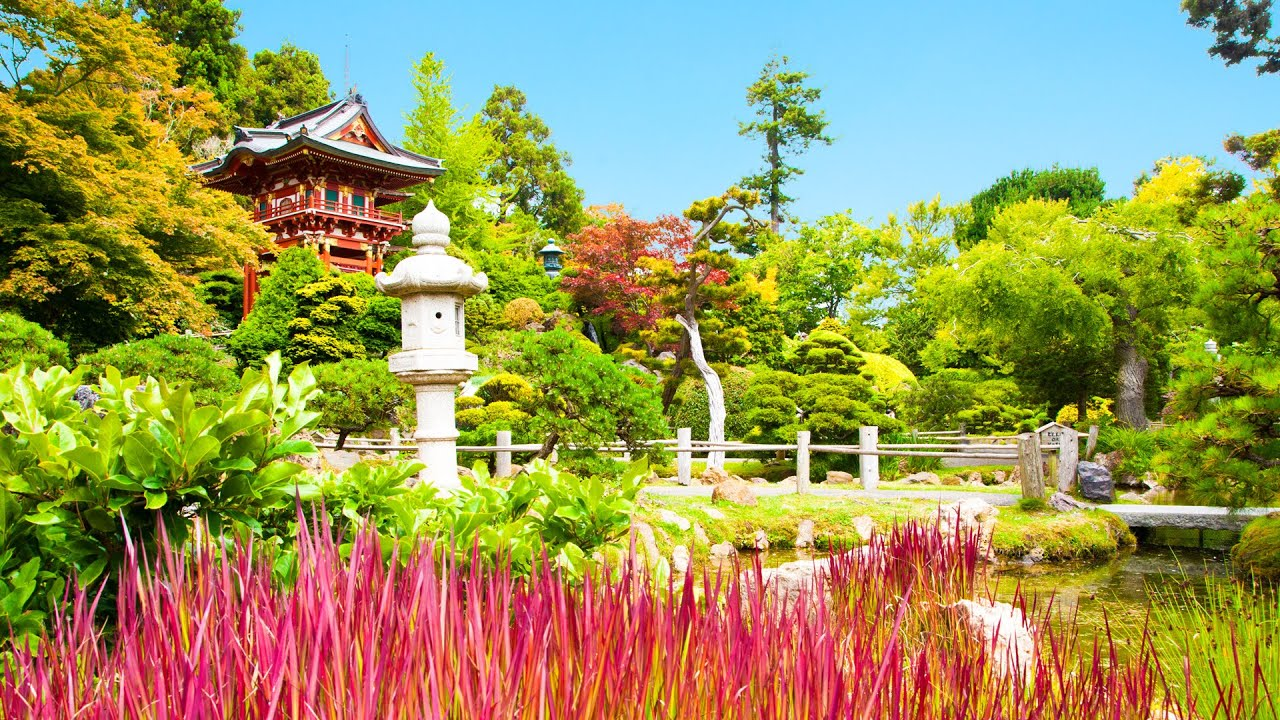 Vibrant and colorful, a great place to visit