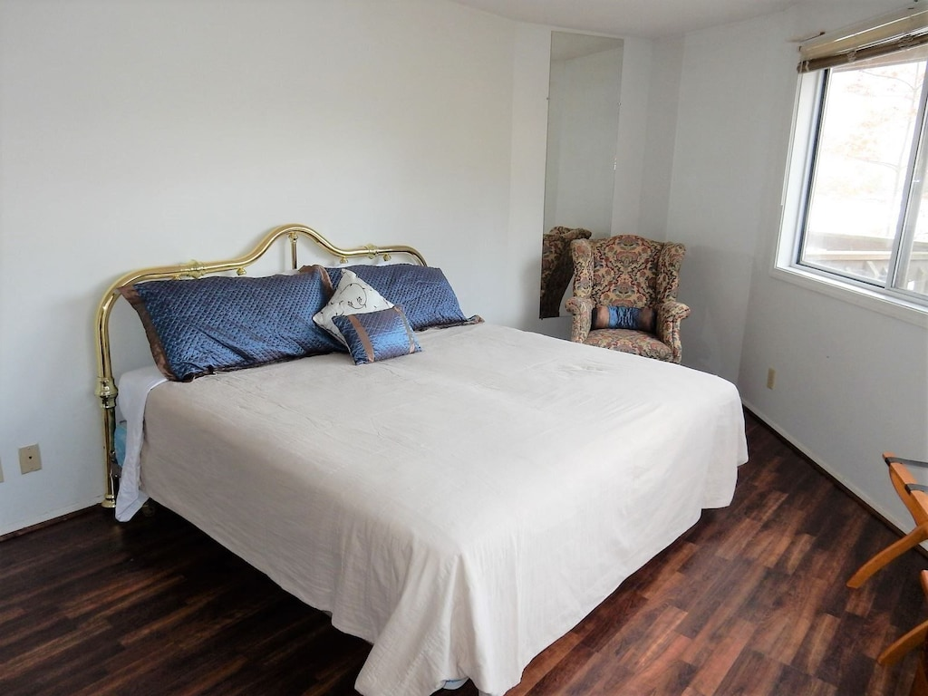 Lower level master bedroom with king size bed