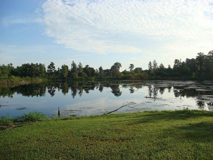 Natural Lake at back of property