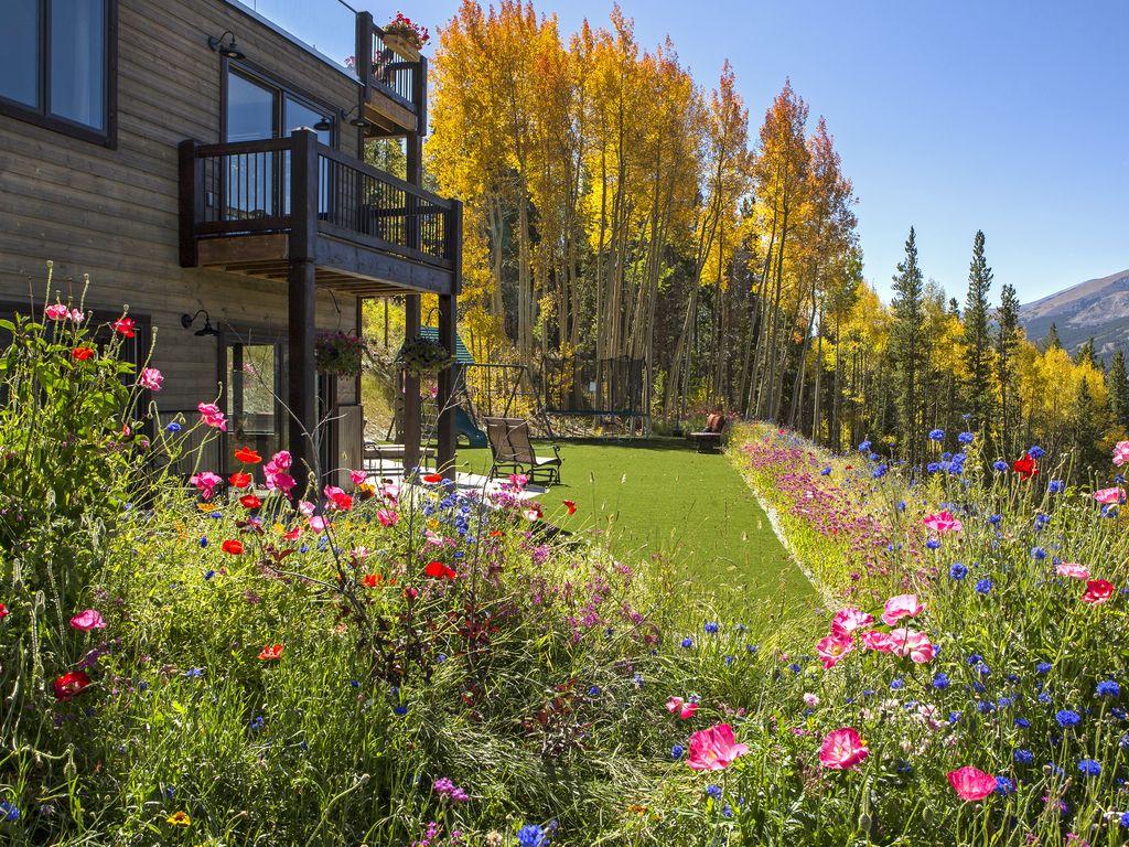 Backyard flowers and aspen foliage - Artificial turf backyard!