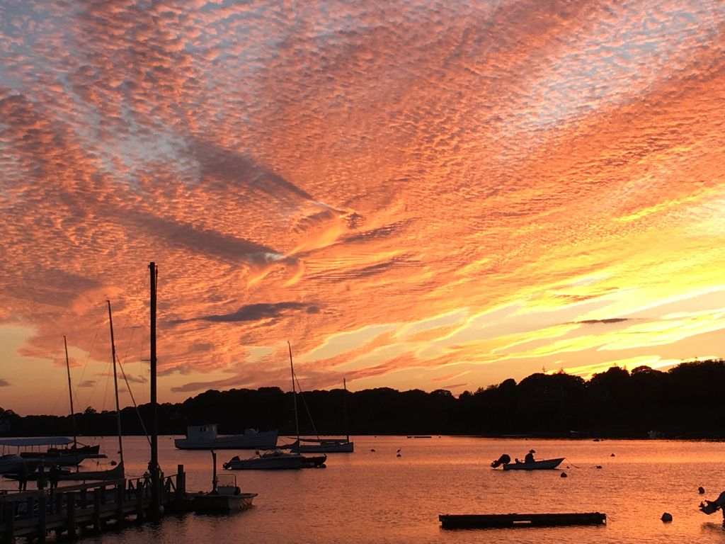 Mill Pond sunsets from the rear yard are a must see & great photo opportunity.