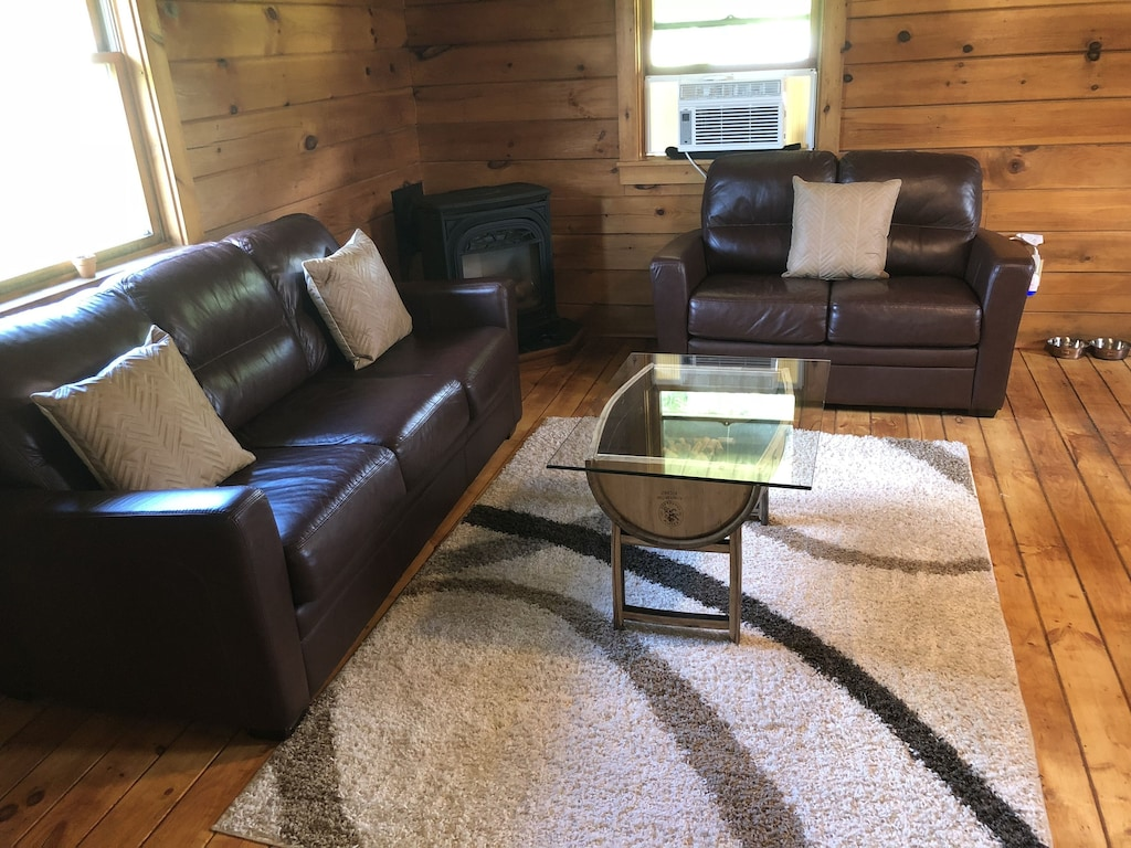 Relaxing living area - pull out couch