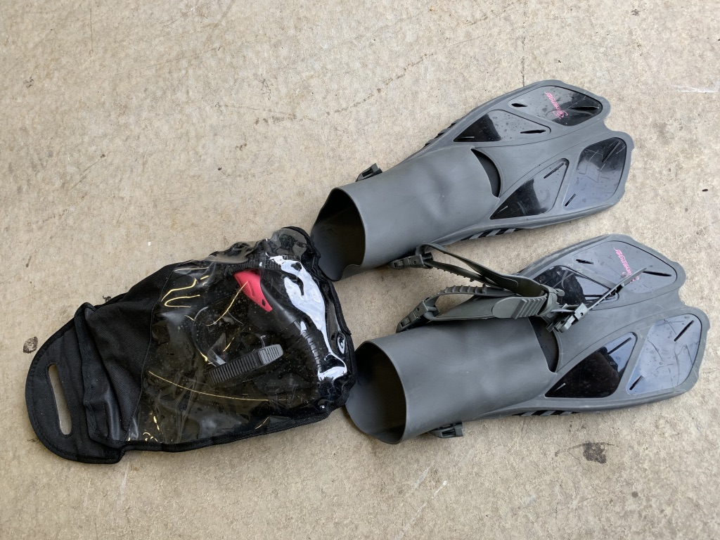Snorkel gear provided at the house.