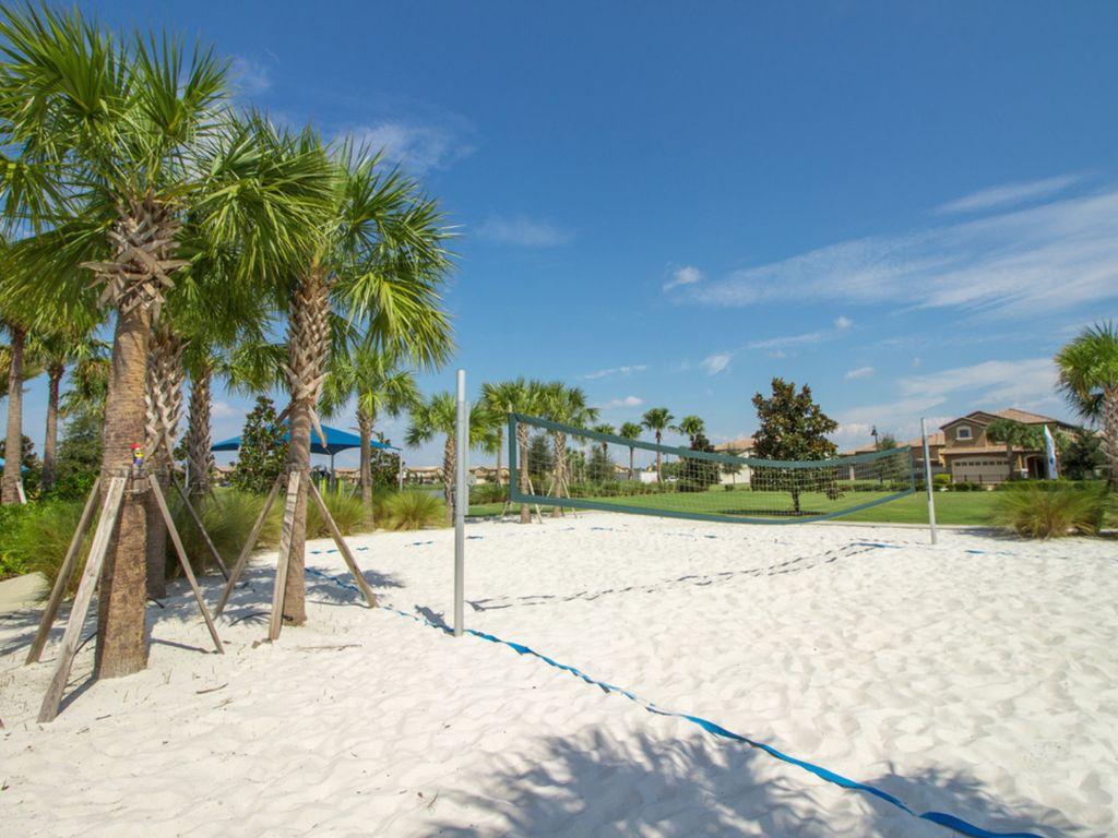Volleyball Anyone