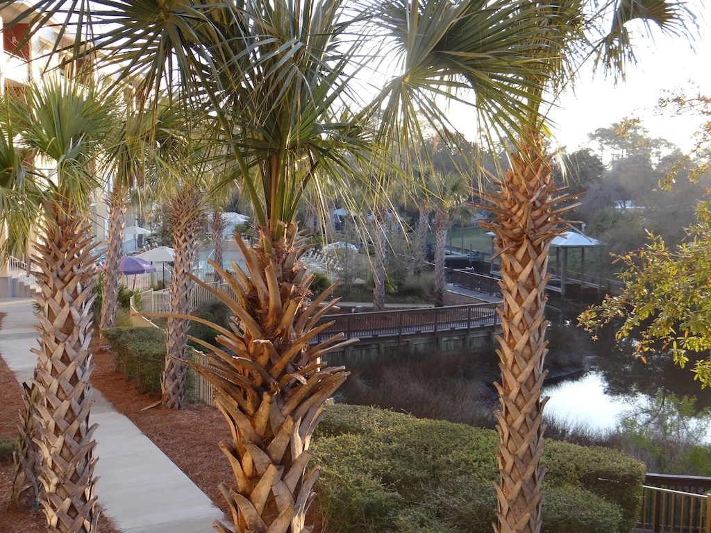 View of the pool & canal from balcony