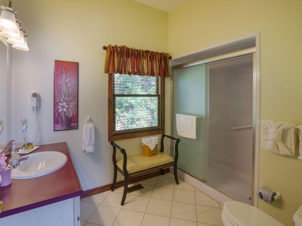 2d floor bath, shower, hair dryer, soap, shampoo & conditioner.