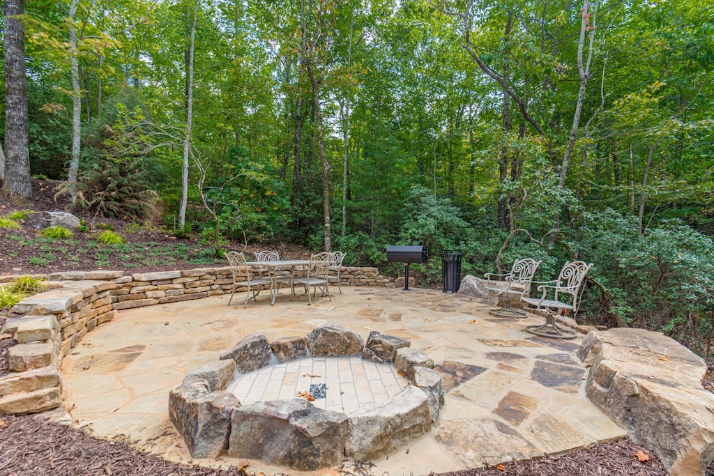 Wood Fire Pit and Charcoal Grill