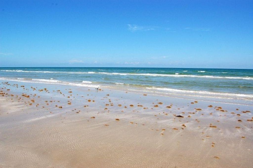BEEEACH! I wanna go to the beach!