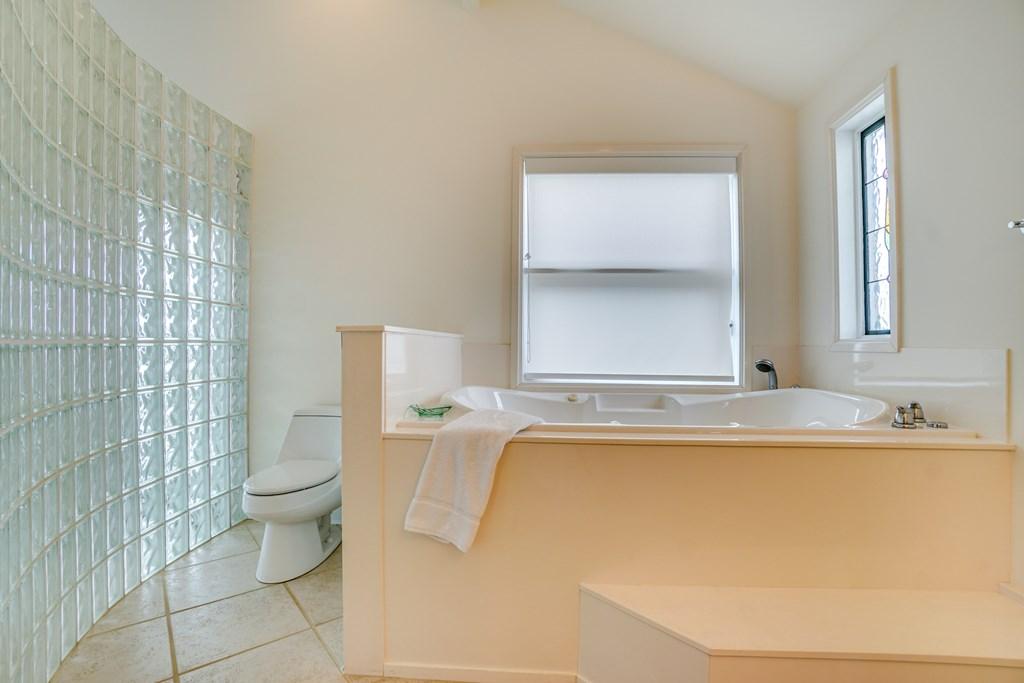 Master bath spa tub