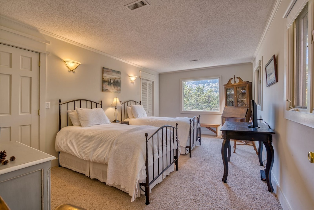 Twin bed Guest bedroom with views