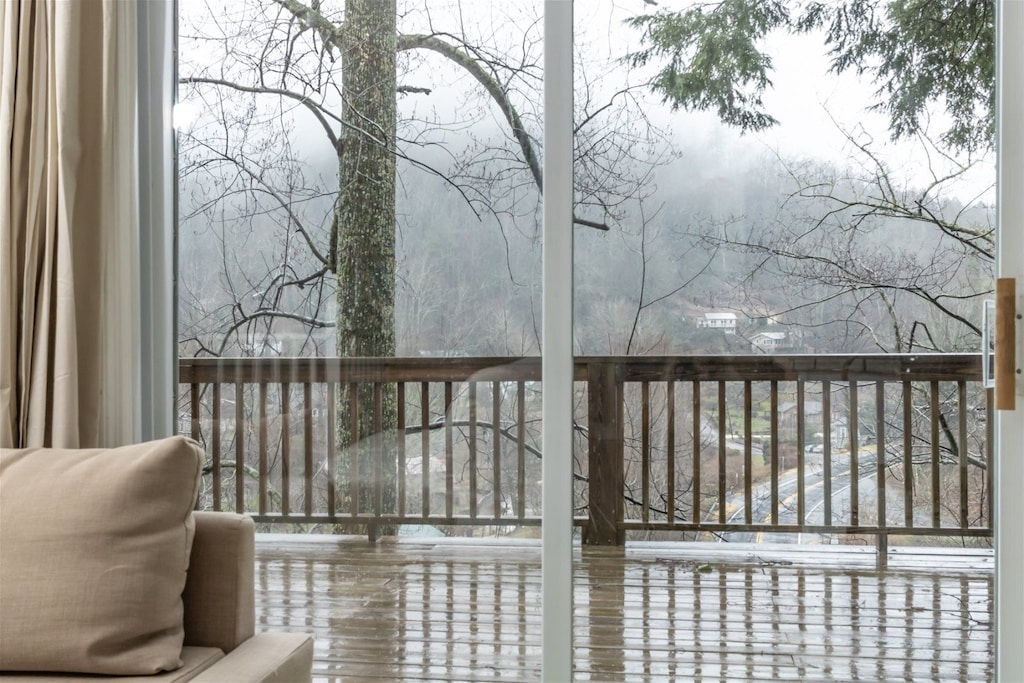 View from the living room, facing the woods