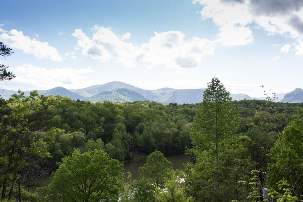 It offers the views that it promises. Just look at trees, lake, and mountains.