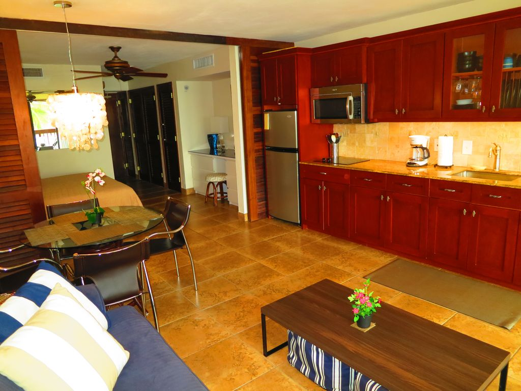 Kitchen and living room can be partitioned by curtains or by hardwood dividers