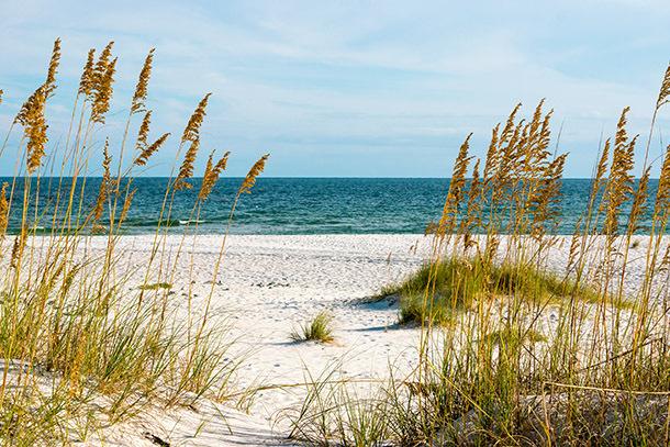 The BEACH at Gulf Shores