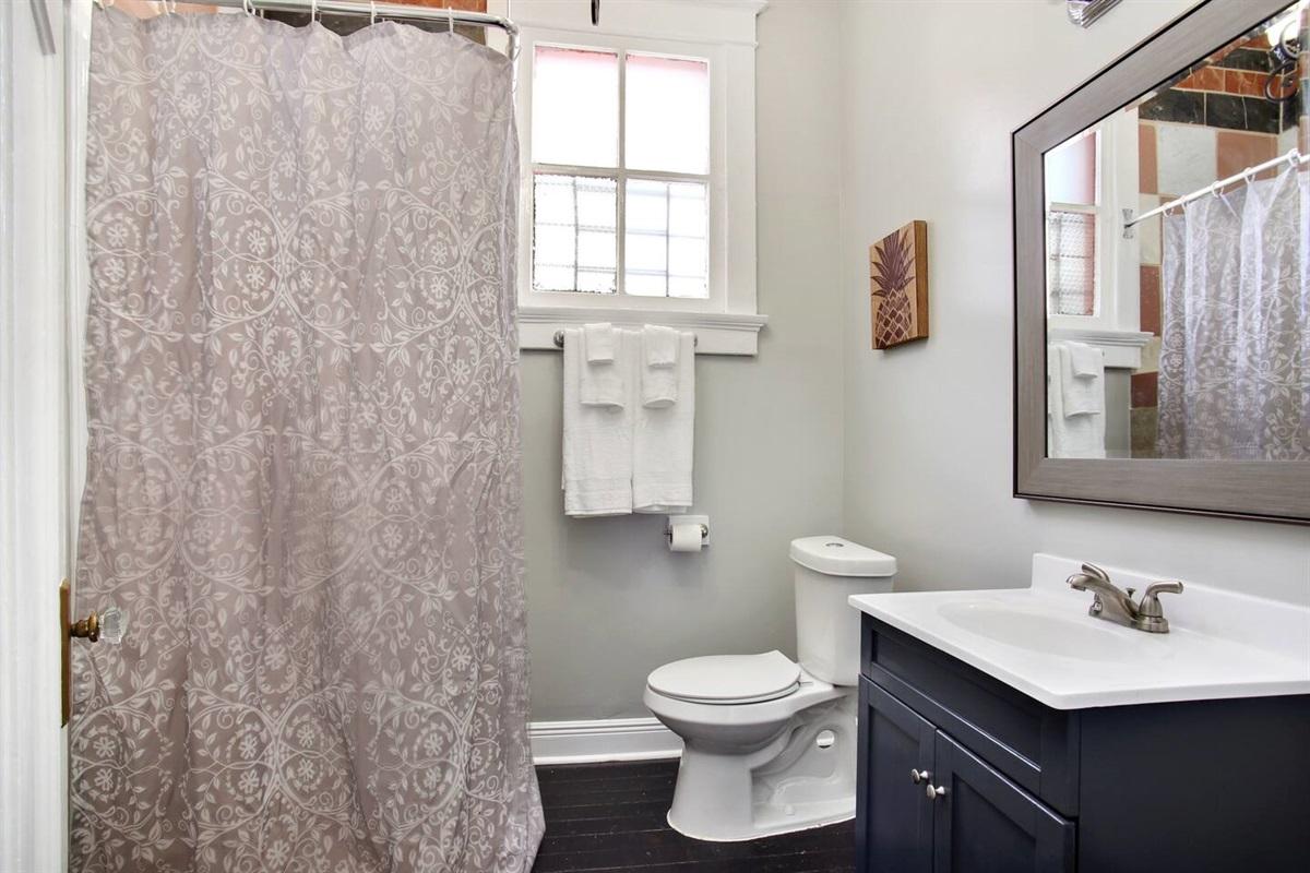 Bathroom 3. Standing shower.