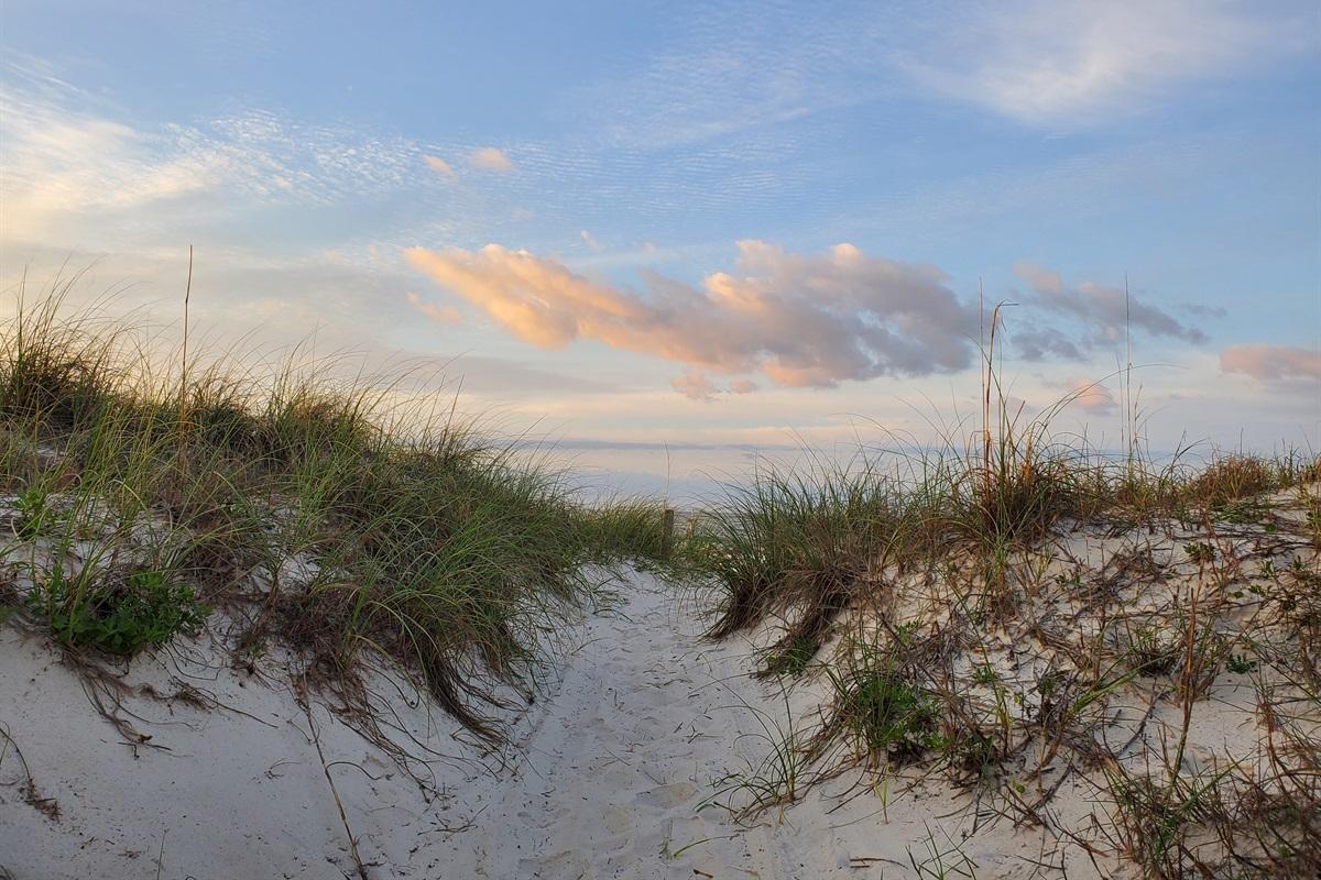 Dune Walkover to Beach