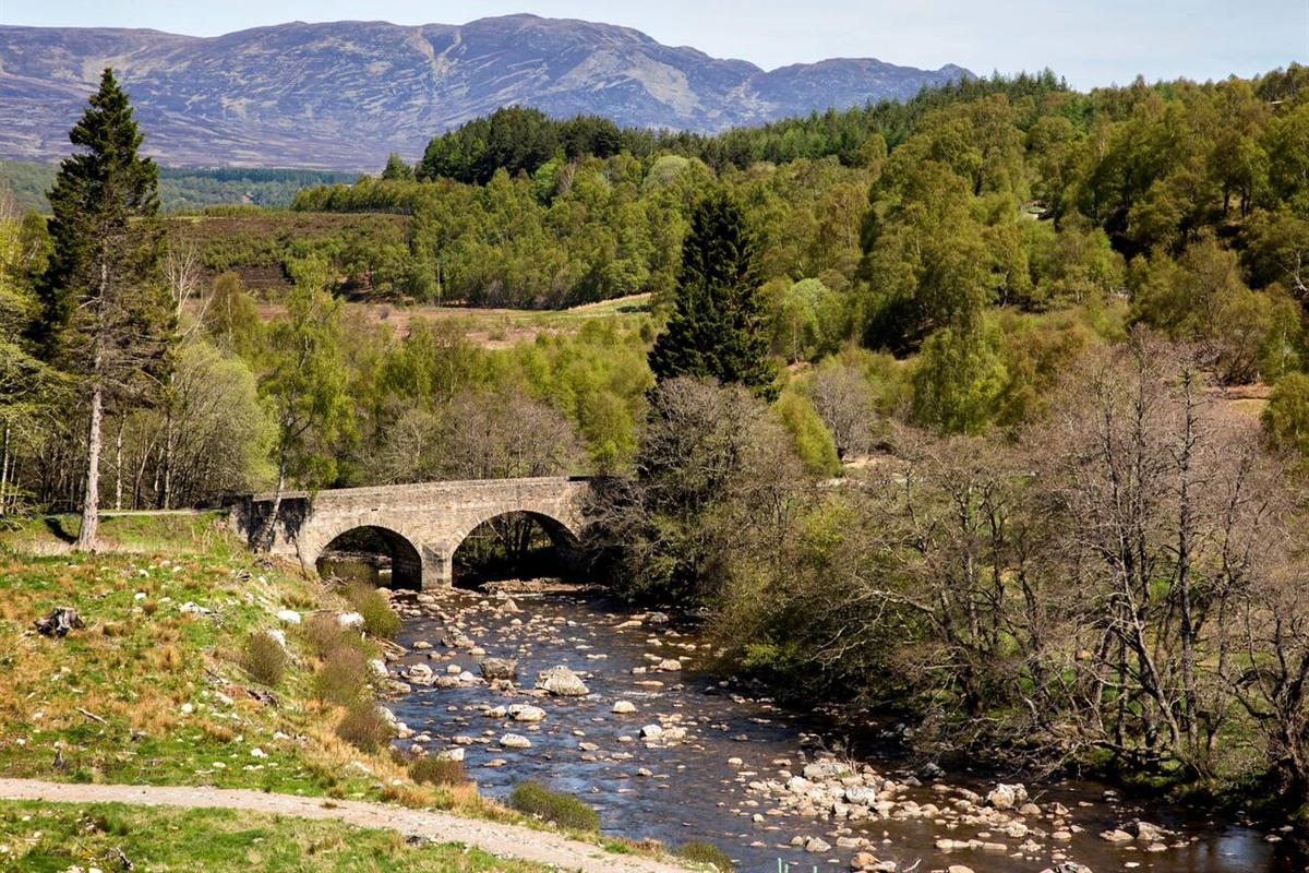 The road to Glentruim Lodge.