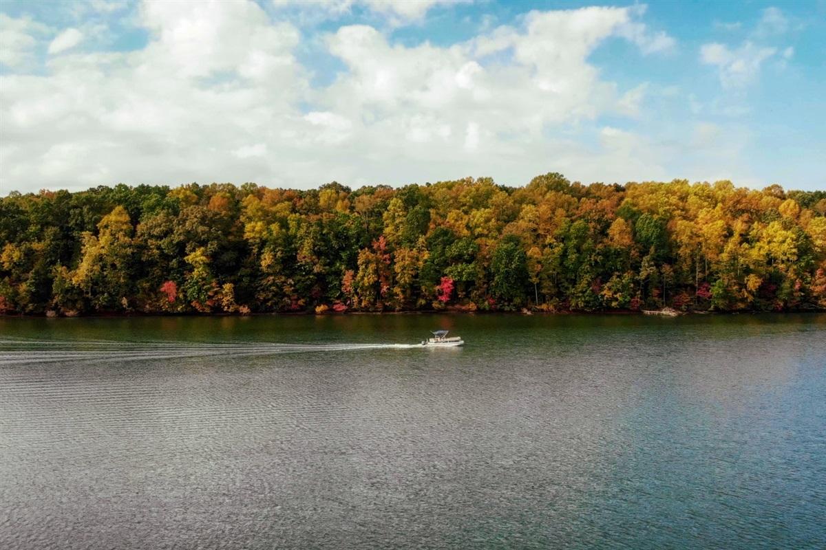 Color Crusing in Autumn Season