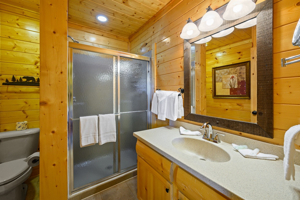 lower level king master suite stand up shower