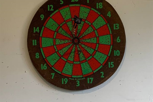 Play a game of darts