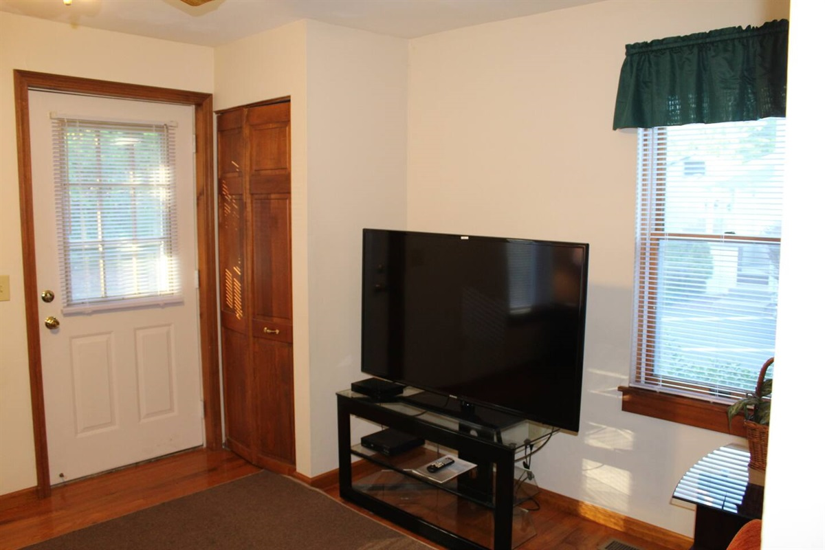 "55"" or larger flat screen cable TV in living room"