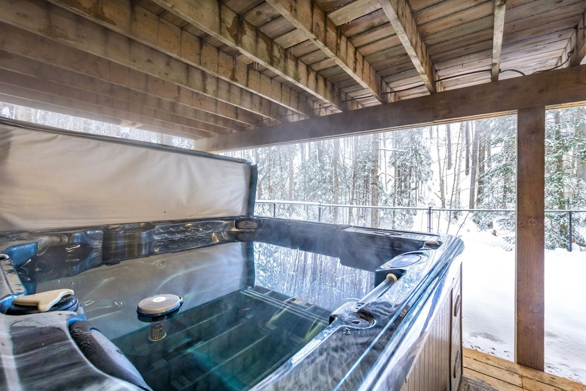 Emerse yourself in the jacuzzi spa open all year round