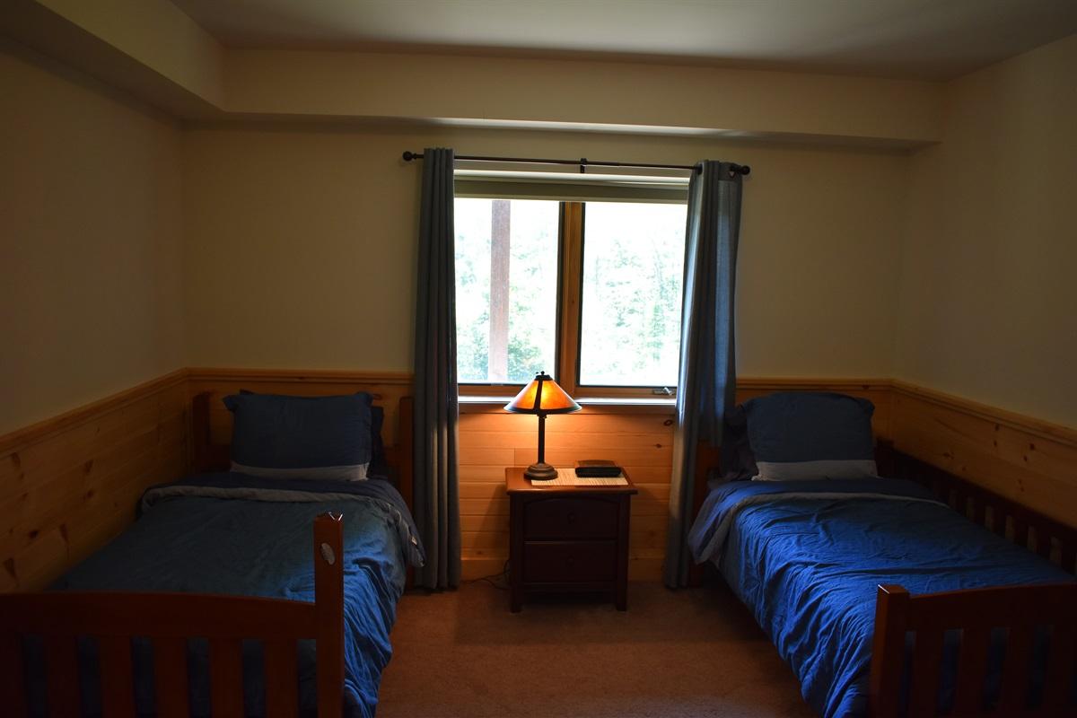 Lower Level Bedroom - Twins
