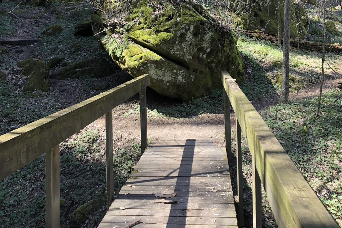"""Ferne Clyffe """"troll bridge"""" on Round Bluff Trail"""