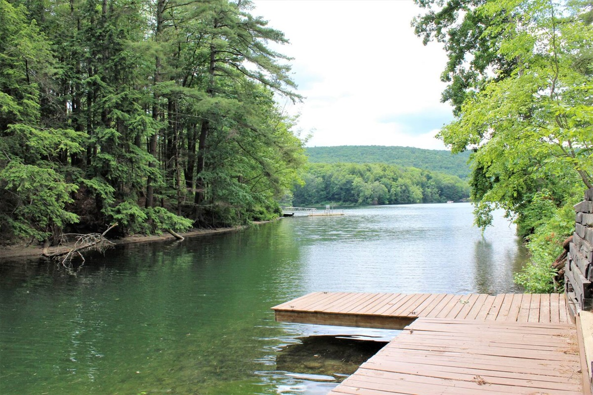 Private dock for fishing, boating or just relaxing