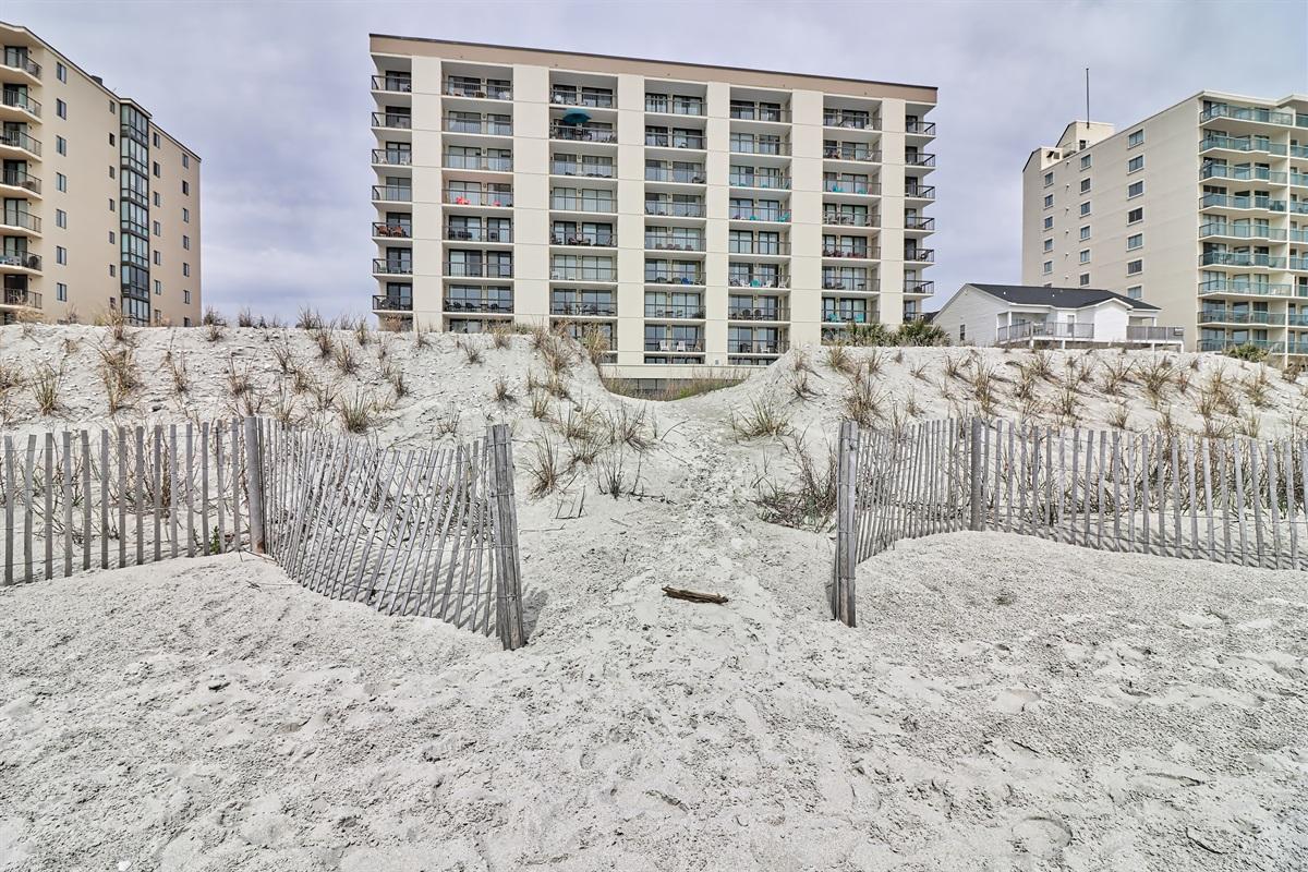 24 ocean front condos for rent