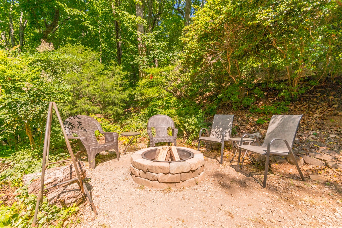 Fire Pit and Charcoal Grill