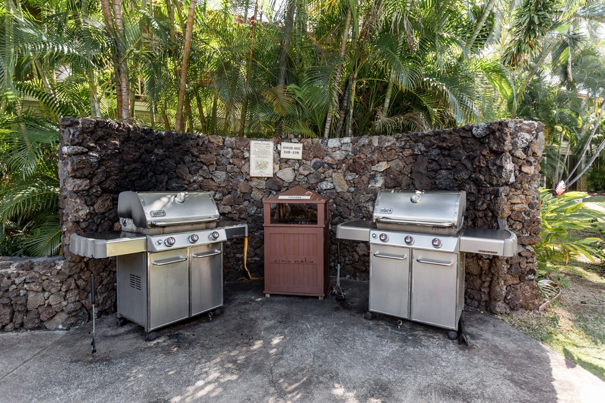 Multiple BBQ areas around property